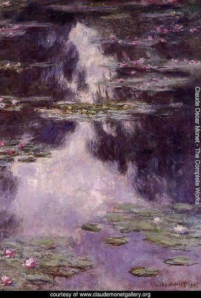 Water-Lilies 10