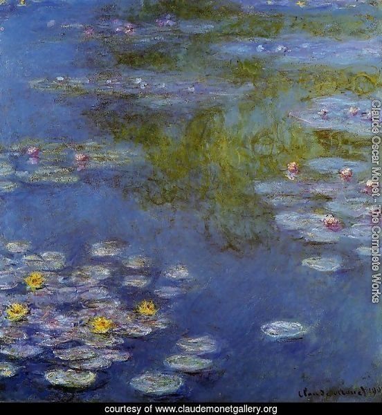 Water-Lilies 17