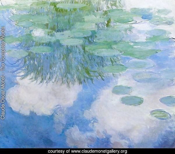 Water-Lilies 24