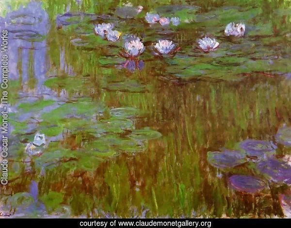 Water-Lilies 26