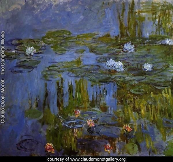 Water-Lilies 28