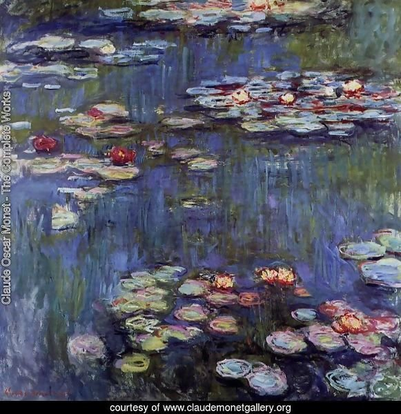 Water-Lilies 29