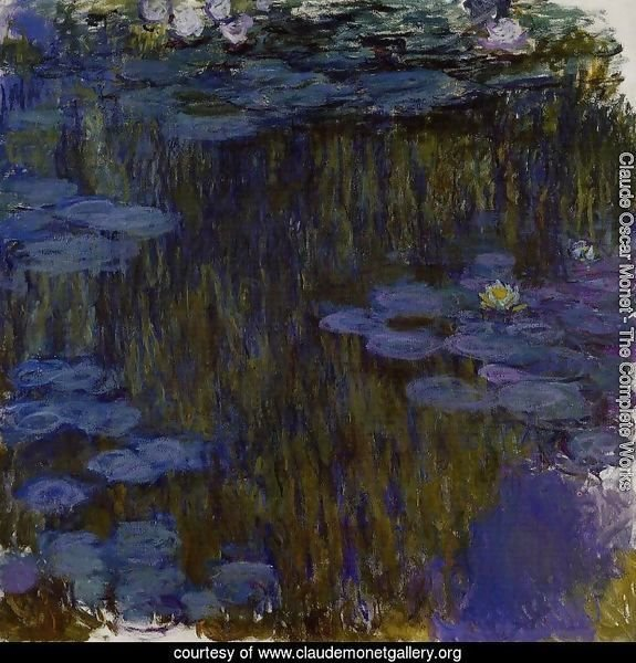 Water-Lilies 30
