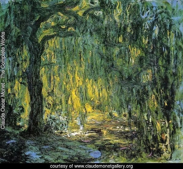Weeping Willow II