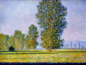 Claude Oscar Monet - Meadow at Limetz