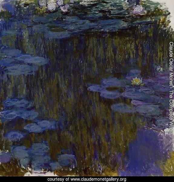 Water-Lilies 49