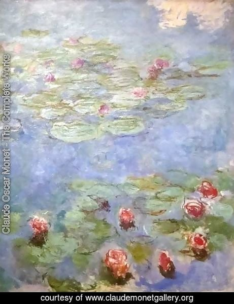 Water Lilies 43