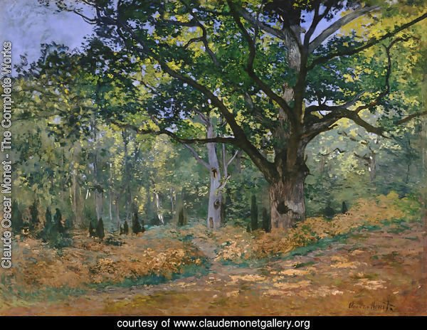 The Bodmer Oak Fontainebleau Forest 1865