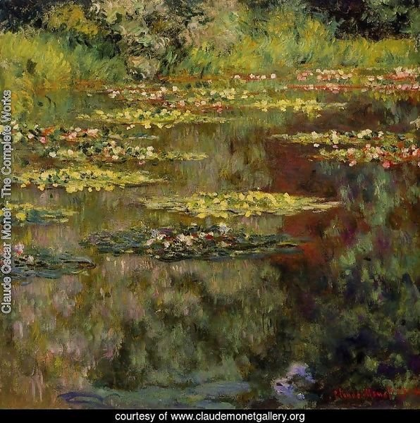 Water-Lilies4 1904