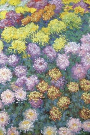 Claude Oscar Monet - Massif de chrysanthemes