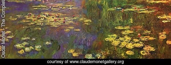 Nympheas (Water Lilies)