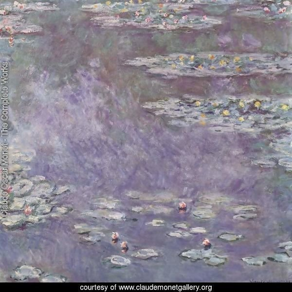 Water-Lily Pond 2
