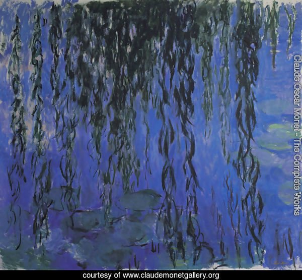 Water Lilies and Weeping Willow Branches