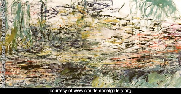 Water Lilies 52