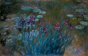 Irises and Water-Lilies