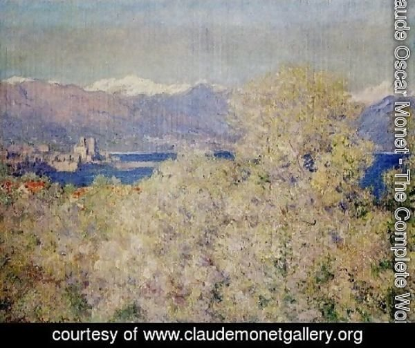 Claude Oscar Monet - Antibes   View Of The Salis Gardens