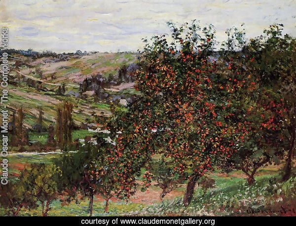 Apple Trees Near Vetheuil