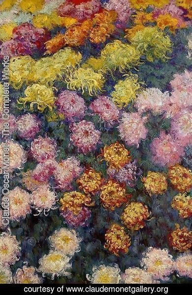 Claude Oscar Monet - Bed Of Chrysanthemums