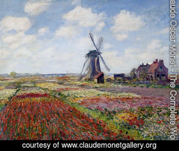 Claude Oscar Monet - Field Of Tulips In Holland