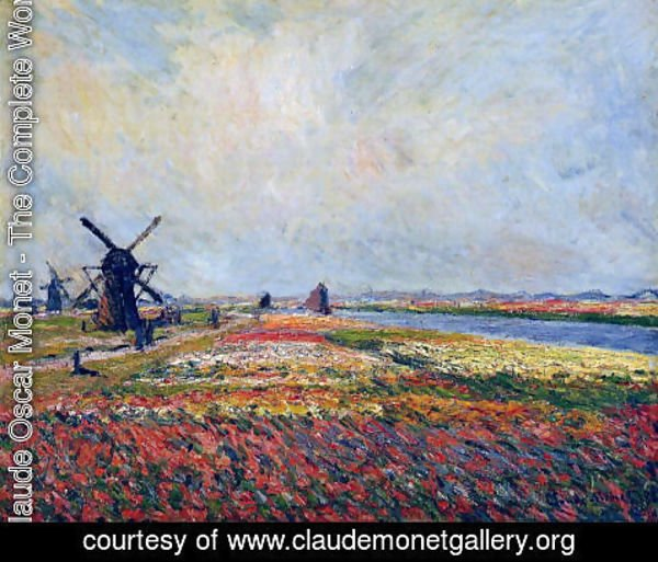 Claude Oscar Monet - Fields Of Flowers And Windmills Near Leiden