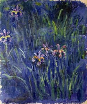 Claude Oscar Monet - Irises3