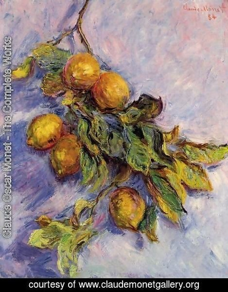 Claude Oscar Monet - Lemons On A Branch