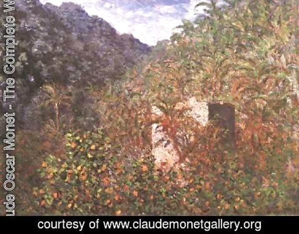 Claude Oscar Monet - Olive Trees And Palm Trees In The Valley