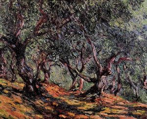 Claude Oscar Monet - Olive Trees In Bordighera