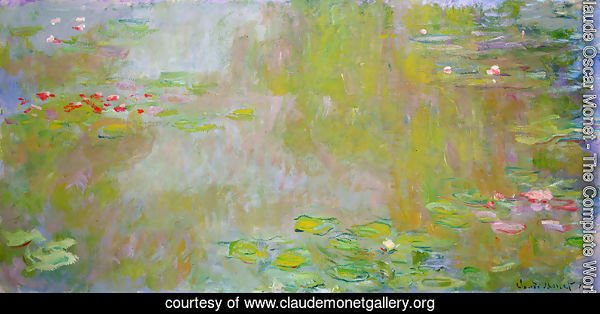 The Water Lily Pond3