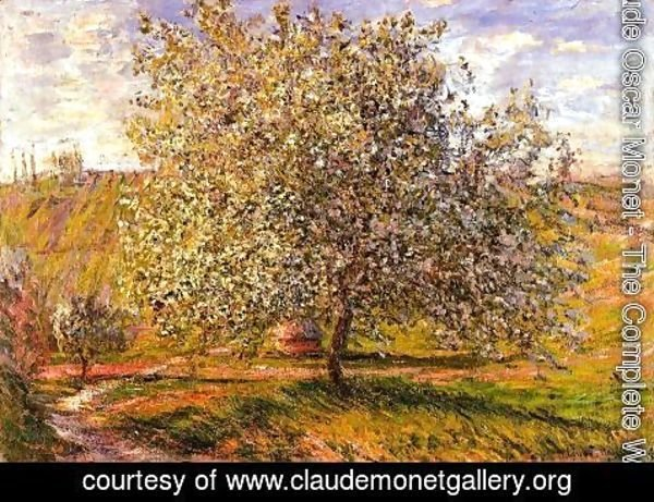 Claude Oscar Monet - Tree In Flower Near Vetheui