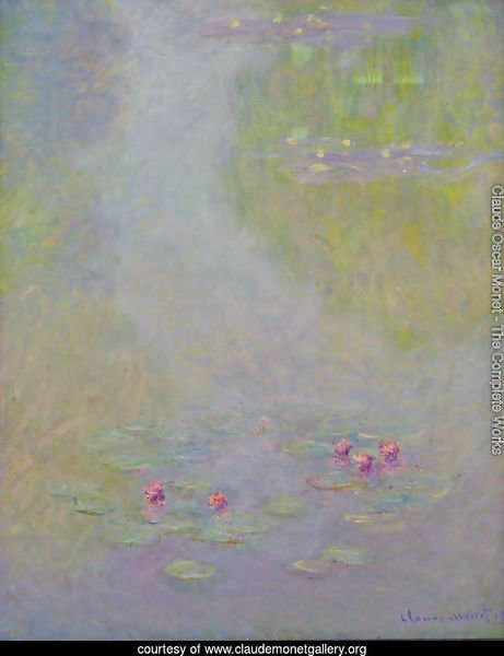 Water Lilies22
