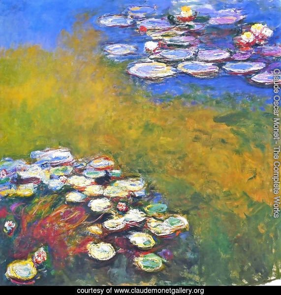 Water Lilies23