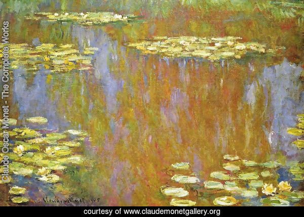 Water Lilies25
