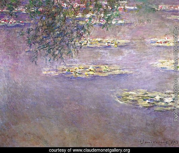 Water Lilies28