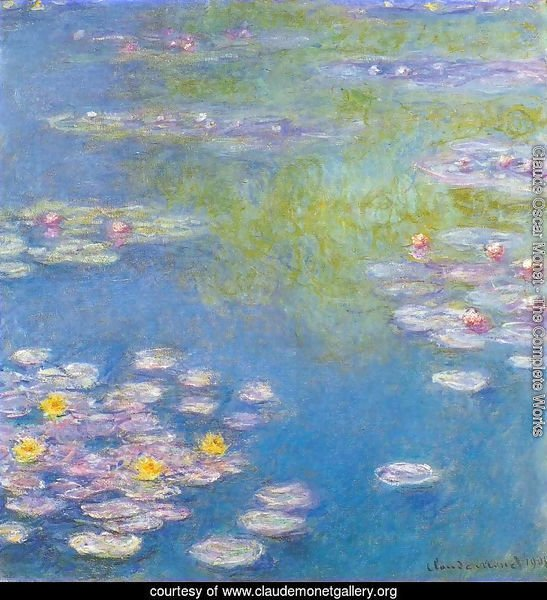 Water Lilies32