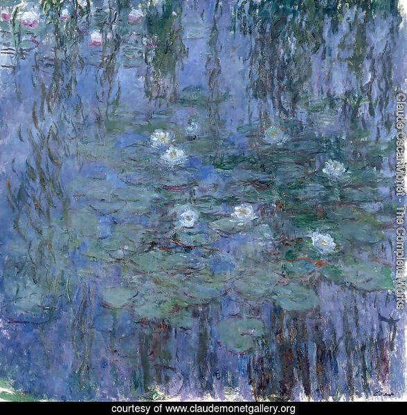 Water Lilies42