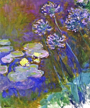 Water Lilies And Agapanthus59