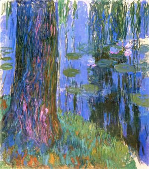 Weeping Willow And Water Lily Pond2