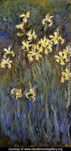 Claude Oscar Monet - Yellow Irises