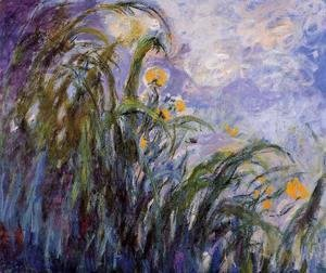 Claude Oscar Monet - Yellow Irises3
